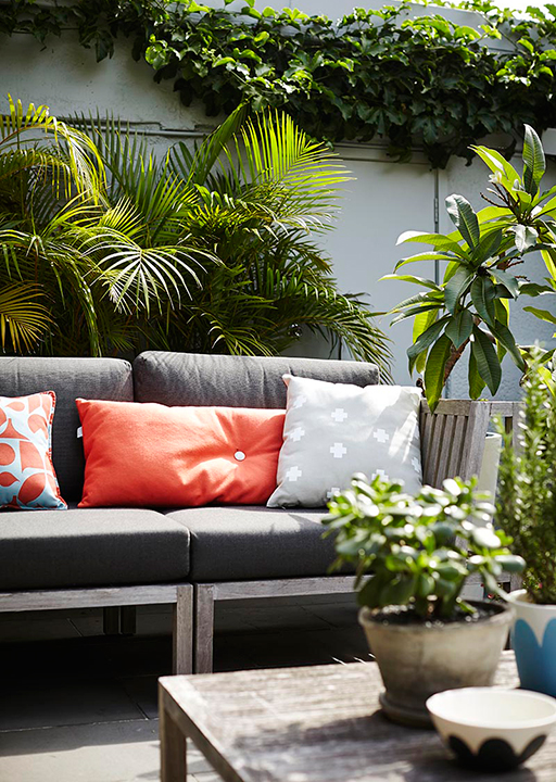 Potted paradise: how to create an urban oasis (фото 4)