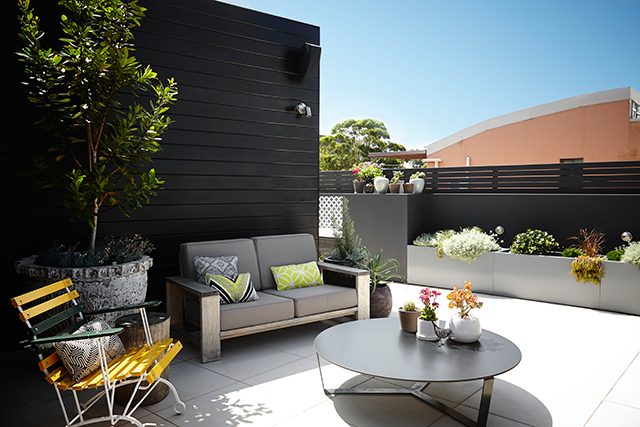 Potted paradise: how to create an urban oasis (фото 6)