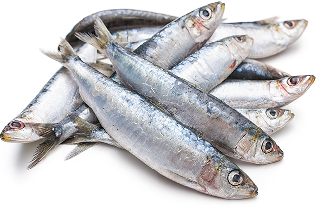 Catch of the day: 5 must-try superfoods from the sea (фото 5)