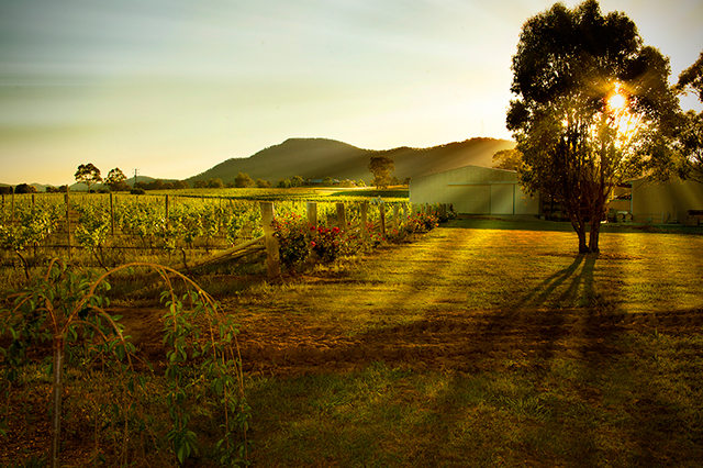 The Hunter Valley is about to get even more delicious