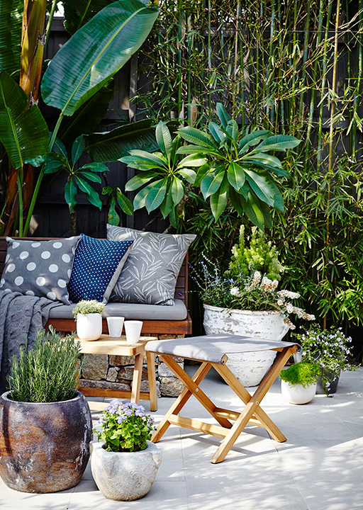 Potted paradise: how to create an urban oasis (фото 3)