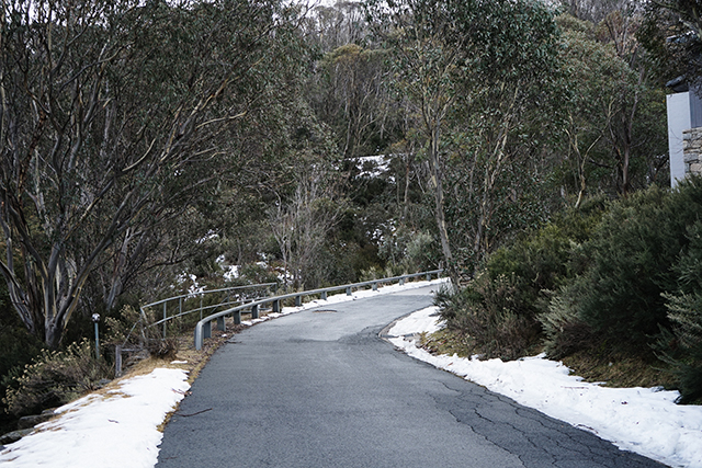 The Buro road trip: blazing trails to Thredbo