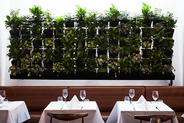 A classic French bistro opens in Melbourne today