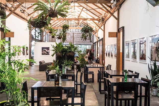 Australia's top co-working spaces for creatives (фото 3)