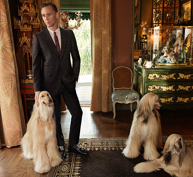 Tom Hiddleston lands Gucci Campaign (фото 3)