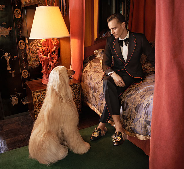 Tom Hiddleston lands Gucci Campaign (фото 2)