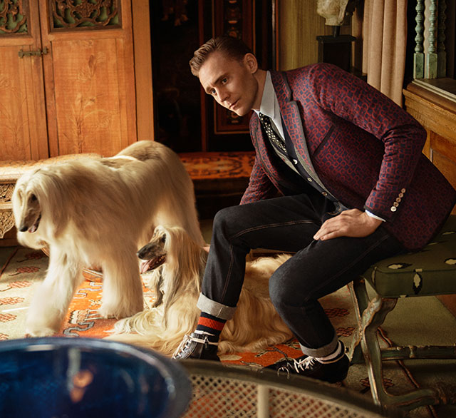 Tom Hiddleston lands Gucci Campaign (фото 1)