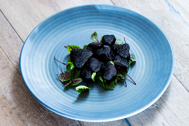 It's truffle season! Here's where to celebrate in Sydney (фото 1)