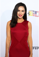Megan Fox may be married to Brian Austin Green but has confirmed she is bi.