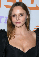 Stella McCartney: fashion designer, animal rights activist, animal-free fashion pioneer, OBE (image: Steve Granitz/Getty)