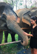 """Spent the afternoon learning about this beautiful animals at the @phuketelephantsanctuary in Thailand,"" Portuguese model Sara Sampaio wrote on Instagram."