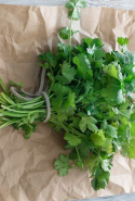 Coriander. If you want to detox, this is your herb of choice. Have it every day in your salads.