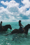 Just casual: Kendall Jenner and Hailey Baldwin ride horses through the surf in Barbados / @kendalljenner
