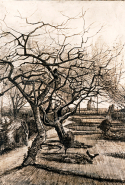 Vincent van Gogh, The parsonage garden at Nuenen in winter mid March 1884 Nuenen pen and brown ink with white heightening 51.5 x 38.0 cm Museum of Fine Arts, Budapest Gift of Pál Majovszky, 1934
