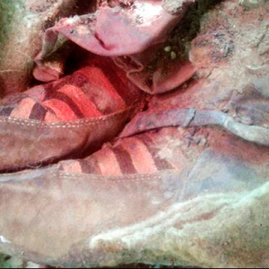 This Mongolian mummy was an Adidas fan from WAY back