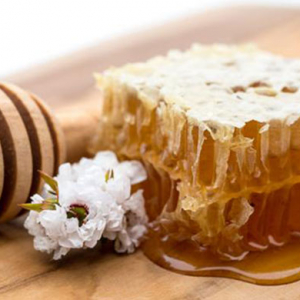 Manuka Honey may help fight off hospital infections