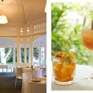 Earthly delights: gin cocktails and tapas at the Botanic Gardens