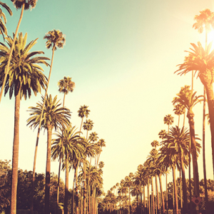 Buro city guide: LA