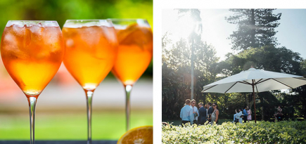 Chiswick is your new Friday night alfresco cocktail spot