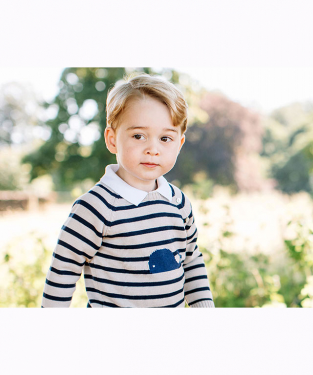 Prince George official 3rd birthday portrait