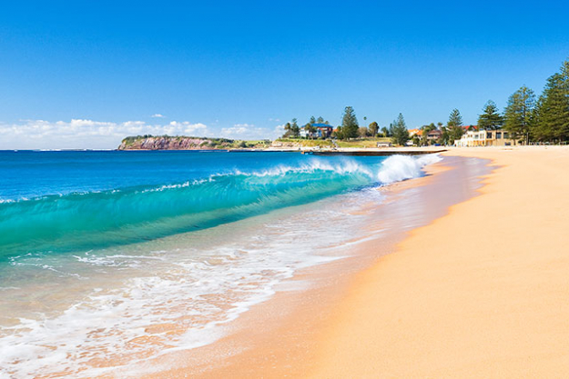 Collaroy Beach, NSW