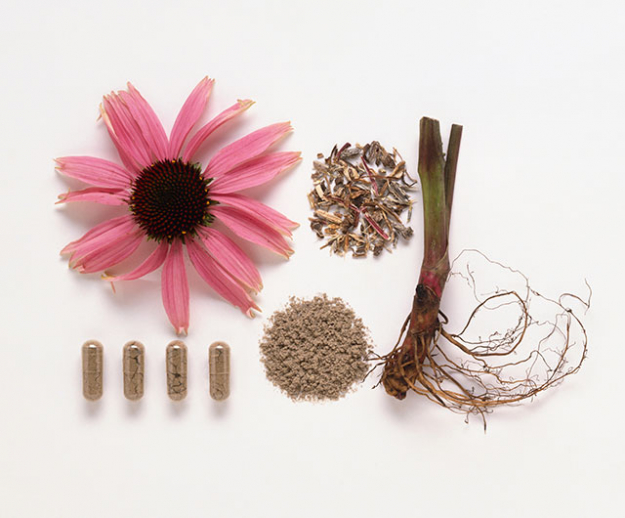 "Echinacea, Andrographis and Olive Leaf<p class=""Default"" style=""text-align: justify;""><span style=""font-size: 17px;"">Are all herbs that have antiviral activity as well as immune system stimulation effects. They work beautifully together and can be taken at the first sign of a sniffle as well as prophylactically thereafter to ensure your immune system stays strong during cold season.</span></p>"