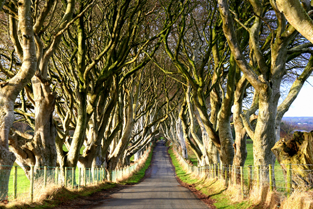 Belfast to Londonderry, Northern Ireland: Game of Thrones fans will recognise the scenery out the window, from Giant's Causeway to Ballintoy Harbour.