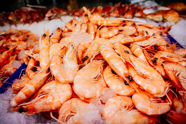 Fresh seafood, Sydney Fish Markets