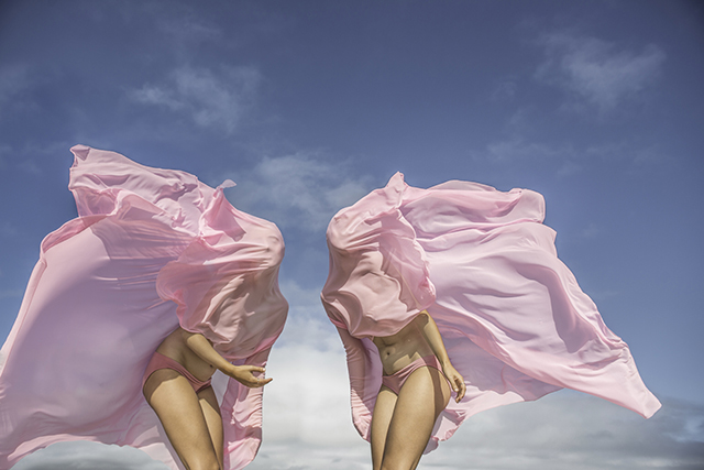 Photography by Honey Long and Prue Stent