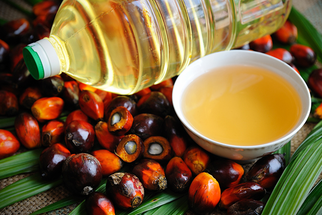 4. Palm Oil  Derived from the palm fruit, the large majority (up to 85%) of palm oil comes from Indonesia and Malaysia using non-sustainable methods. The palm oil industry is responsible for huge expanses of deforestation, a major factor in climate change and the endangering of many species of native animals. The orangutans of Borneo and Sumatra have become emblematic of the deforestation crisis, having lost over 90% of their habitat to the palm oil industry.