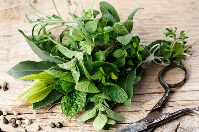 Herbs: think basil, chamomile, fennel. Going herbal is akin to sipping a beauty elixir. Skin healing properties abound, from harmful bacteria banishment to amazing skin nourishment.