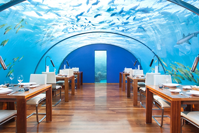 Ithaa Undersea Restaurant, The Maldives. Jules Vernes thought 20,000 leagues sounded great, the Conrad Maldives thinks 16-feet deep dining is better. The world's first all-glass undersea fine diner sees you dine with sharks without them dining on you.