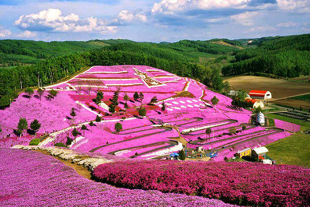 Japan. Eternally inspiring and steeped in tradition, 2016 sees the Shinkasen bullet train extend its network to reach destinations like Hokkaido. Famed for skiing, volcanoes and hot springs; in summer, head to Furano for the kaleidoscopic flower fields.