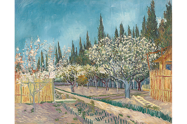 Vincent van Gogh, Orchard bordered by cypresses April 1888 Arles oil on canvas 64.9 x 81.2 cm Kröller-Müller Museum, Otterlo © Collection Kröller-Müller Museum, Otterlo, the Netherlands