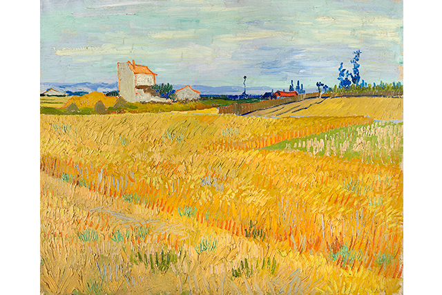 Vincent van Gogh, Wheatfield June 1888 Arles oil on canvas 50.0 x 61.0 cm P. and N. de Boer Foundation, Amsterdam
