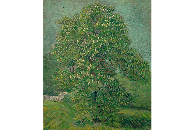 Vincent van Gogh, Horse chestnut tree in blossom mid May 1887 Paris oil on canvas 55.8 x 46.5 cm Van Gogh Museum, Amsterdam (Vincent van Gogh Foundation)