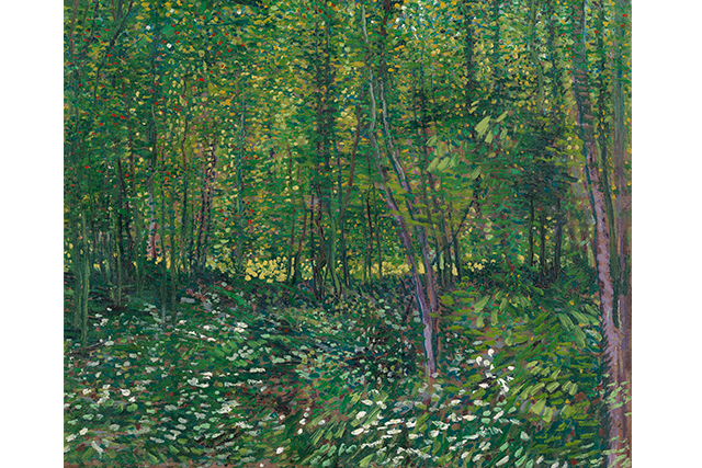 Vincent van Gogh, Trees and undergrowth July 1887 Paris oil on canvas 46.2 x 55.2 cm Van Gogh Museum, Amsterdam (Vincent van Gogh Foundation)