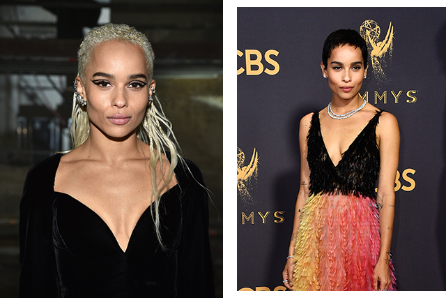 Zoe Kravitz chopped off her platinum blonde locks, sporting a darker pixie cut.