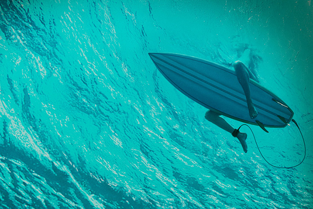 Blake Lively takes on a terrifying shark in 'The Shallows'