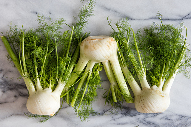2. Fennel. Eating fennel, which contains about 20% vitamin C, regularly increases your body's resistance to infectious diseases. Munching on fennel allows white blood cells (the ones that destroy bacteria and viruses in the body) to work harder which means you won't catch a cold.