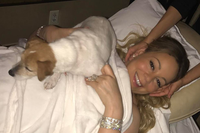 "Mariah Carey. The almost Mrs Packer is also notorious for such behaviour. Her most outrageous demands have been kittens or puppies to play with backstage, a dedicated staffer to dispose of used gum and ""no busy patterns"" in the living room area."