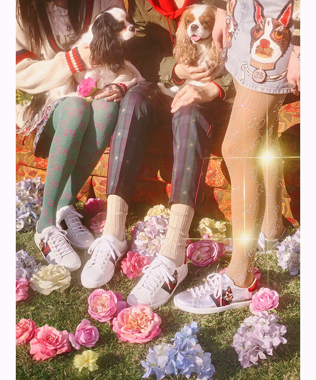 32fe3fcf7 Gucci s latest capsule collection is a dog lovers  dream