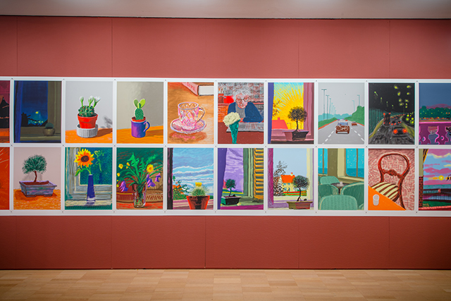 Installation view of David Hockney: Current at the National Gallery of Victoria, Melbourne. © David Hockney Inc.