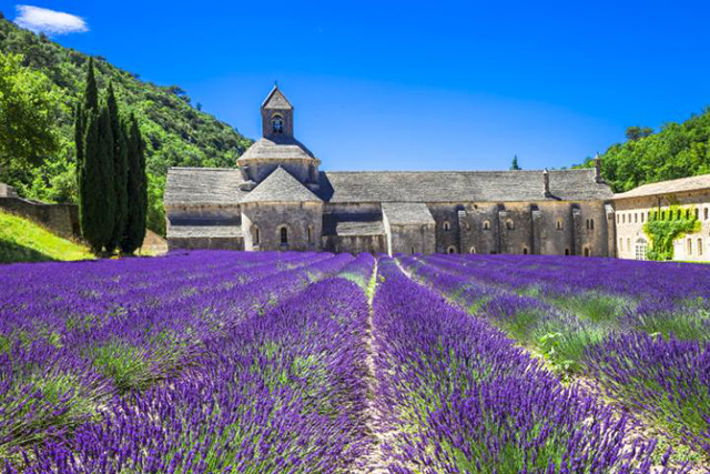 Provence: Filled with the stunning purple hue and scent of lavender, Provence is one of the most scenic and fragrant parts of France. With so much natural beauty it's no wonder Provence has inspired so many famous artists like Cézanne, Van Gogh and Renoir