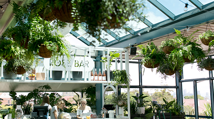Say hey to summer from Mosman's newest rooftop diner