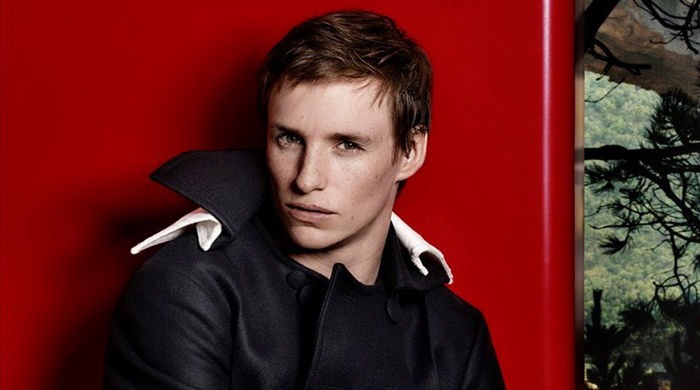 Guess what Eddie Redmayne's new role is?