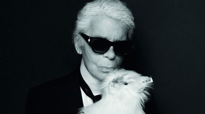 You can now purchase Karl Lagerfeld's cat